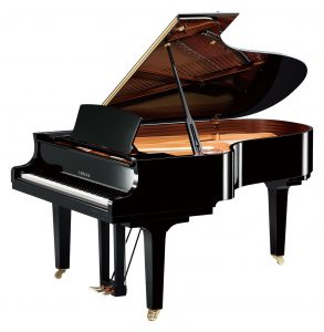 Yamaha Grand Piano Videos